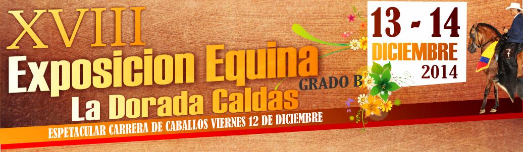 XVIII Exposición equina Grado B