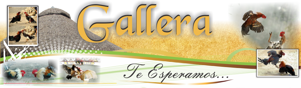 Gallera Dorexpo