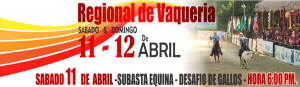 Reg Vaqueria 11