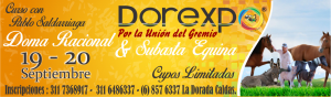 BANNER DOMA