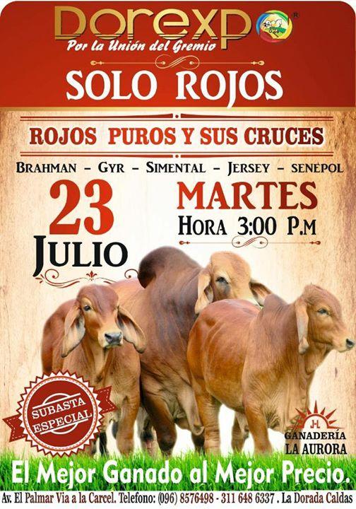 :::::INVITACIÓN:::::  Próximo martes 23 de Julio, #SubastaEspecial desde las 3:00 pm; los esperamos....